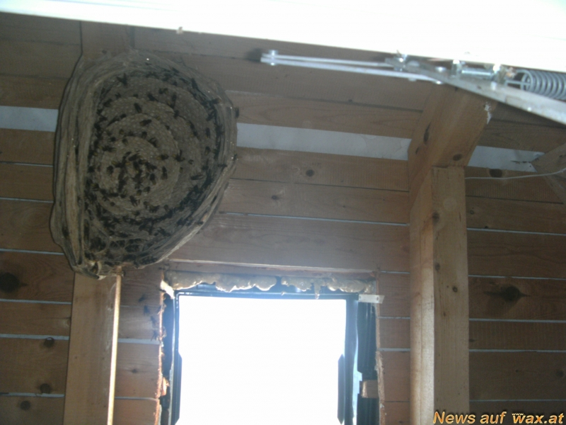 wax at das portal f r feuerwehr und rettungsdienst. Black Bedroom Furniture Sets. Home Design Ideas